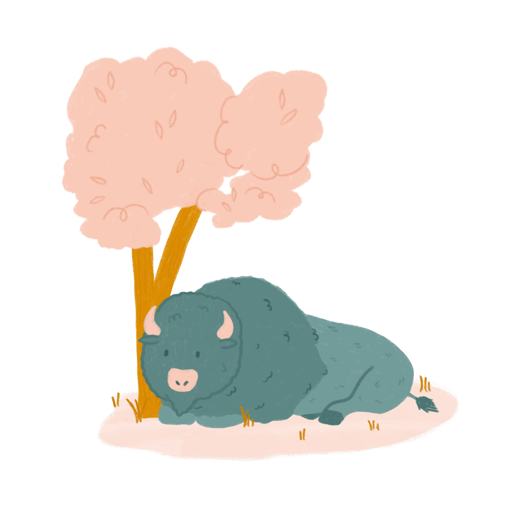 An illustration of a Bison resting under a tree